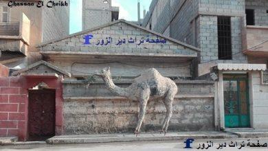 معالم وحارات دير الزور